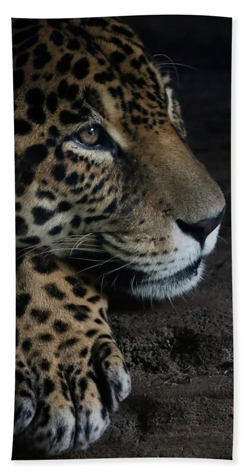 Leopard Hand Towel featuring the photograph Leopard Print by Athena Mckinzie