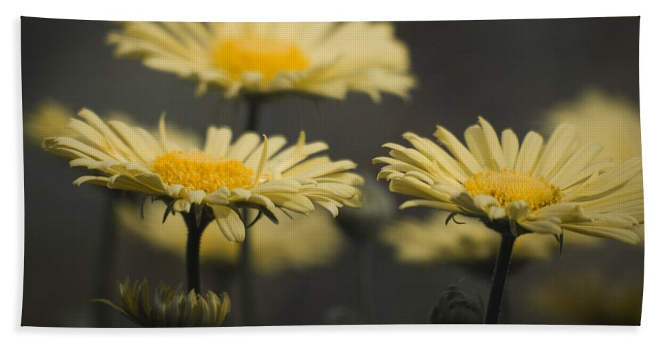 Leopards Bath Sheet featuring the photograph Leopards Bane Desaturated by Teresa Mucha