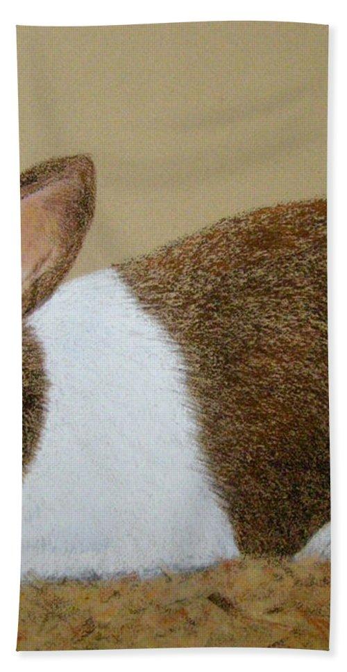 Bunny Bath Towel featuring the painting Les's Rabbit by Lynn Quinn