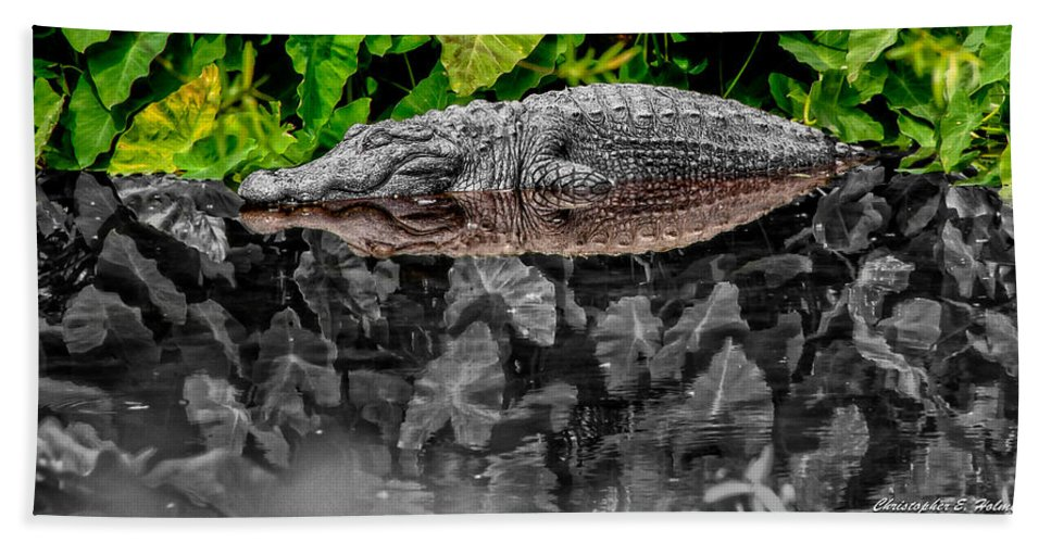 American Hand Towel featuring the photograph Let Sleeping Gators Lie - Mod by Christopher Holmes