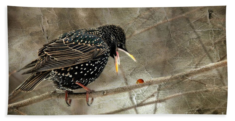 Bird Bath Sheet featuring the photograph Let's Do Lunch by Lois Bryan