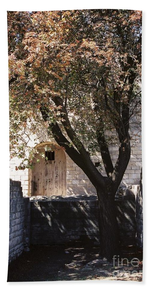 Life Bath Towel featuring the photograph Life And Death by Nadine Rippelmeyer