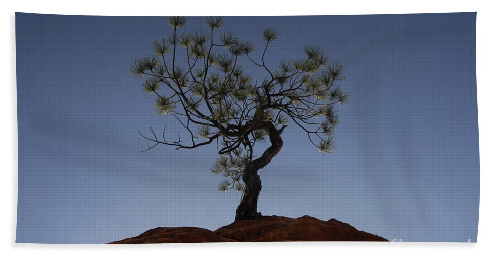 Tree Bath Towel featuring the photograph Life Force by David Lee Thompson
