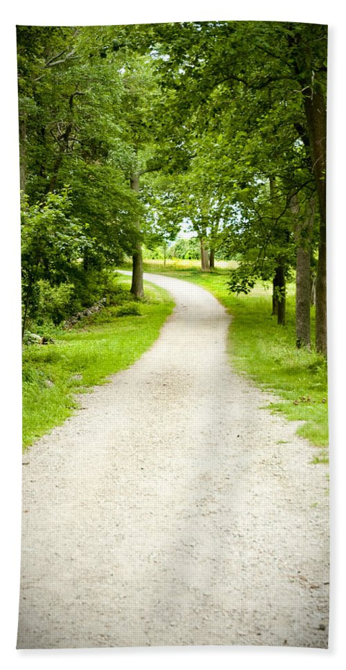 Woods Hand Towel featuring the photograph Life's Path by Greg Fortier