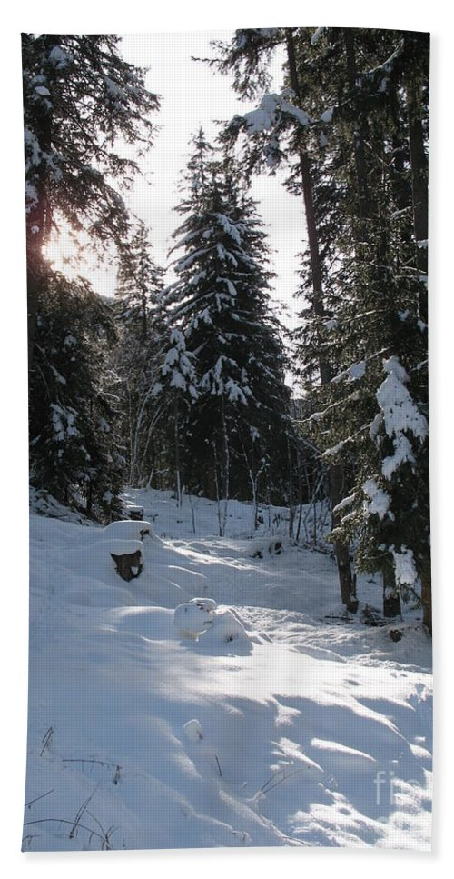 Snow Bath Sheet featuring the photograph Light And Shadow On A Snowy Landscape by Christiane Schulze Art And Photography