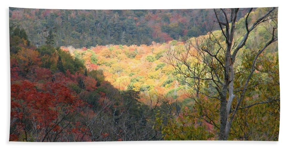 Fall Hand Towel featuring the photograph Light On The Valley by Kelly Mezzapelle