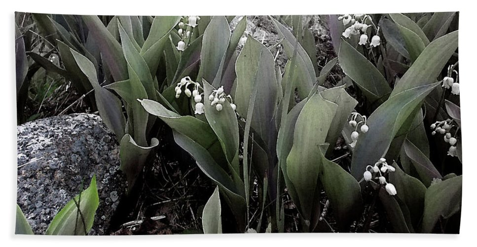Lily Hand Towel featuring the photograph Lilies Of The Valley Mindscape No 2 by Wayne King