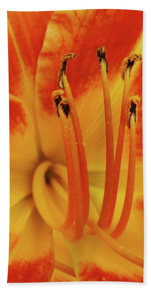 Lilly Hand Towel featuring the photograph Lilly Macro by Michael Peychich