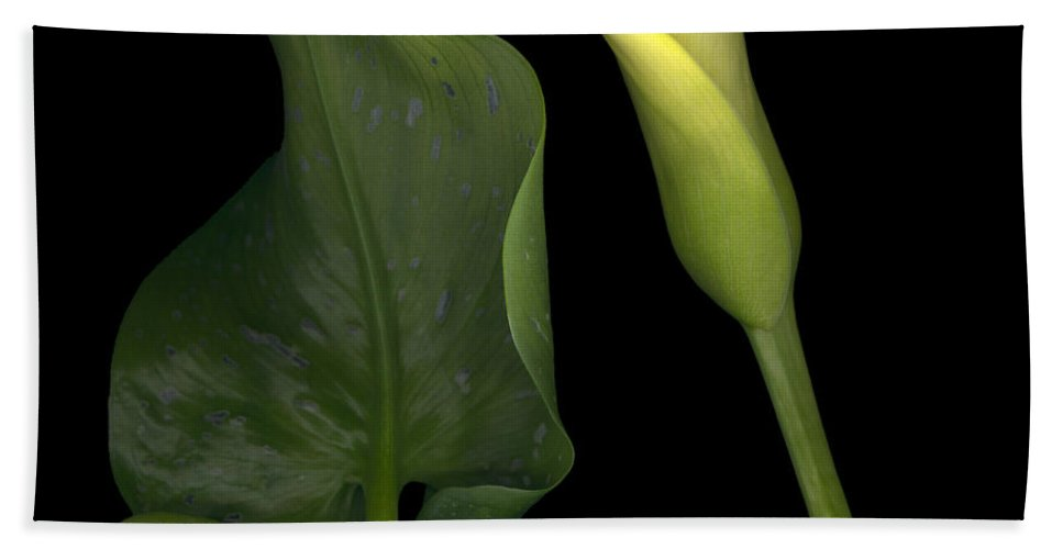 Yellow Bath Sheet featuring the photograph Lily And Leaf Number Two by Heather Kirk