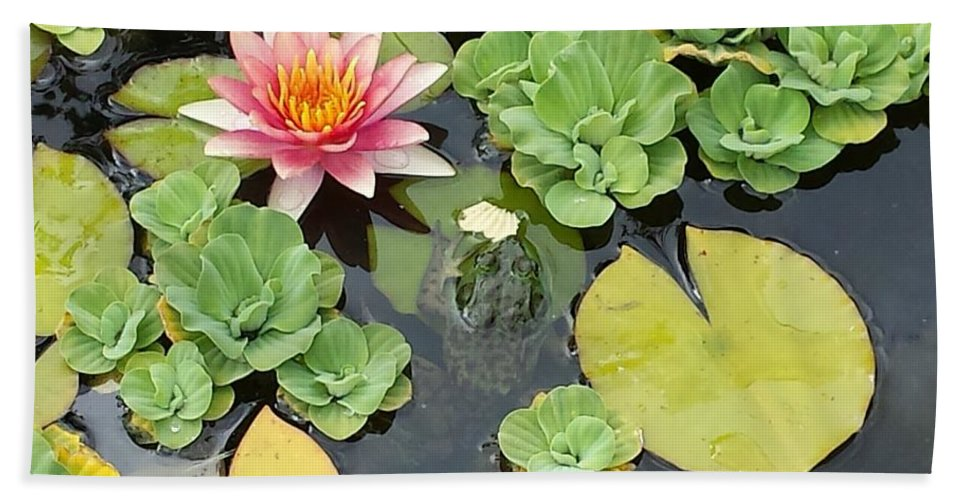 Frog Bath Sheet featuring the photograph Lily Pad Lunch by Diane Berard