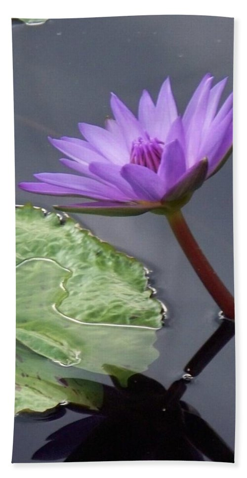 Photograph Bath Sheet featuring the photograph Lily Pond by Eric Schiabor