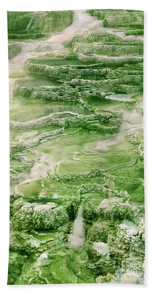 North America Hand Towel featuring the photograph Limestone Detail Minerva Springs Yellowstone National Park by Dave Welling