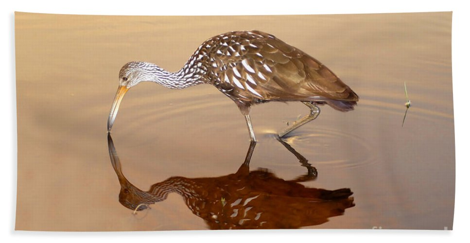 Limpkin Hand Towel featuring the photograph Limpkin In The Mirror by David Lee Thompson