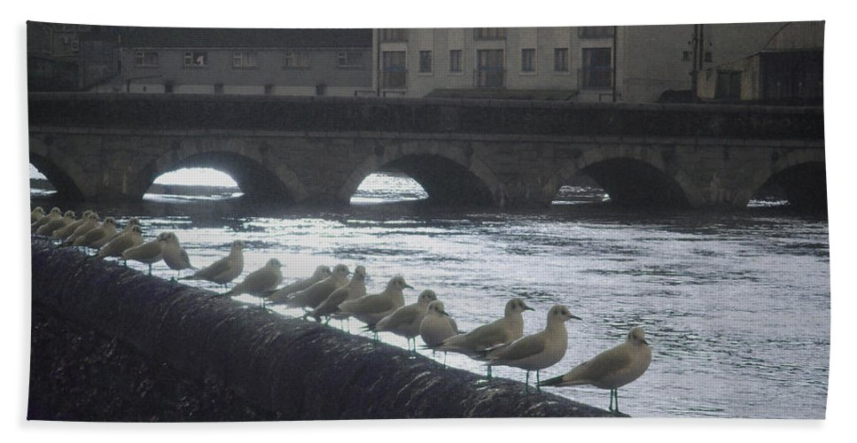 Birds Bath Towel featuring the photograph Line Of Birds by Tim Nyberg