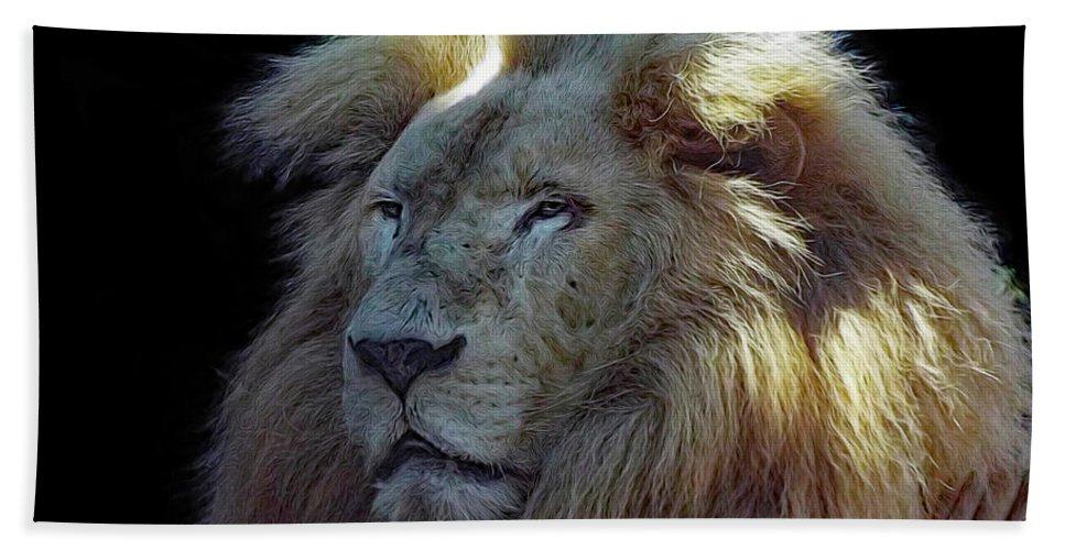 Lion Bath Sheet featuring the photograph Lion by Deborah Ferrence