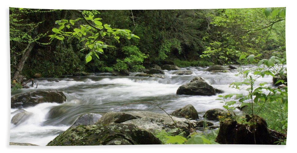 River Hand Towel featuring the photograph Litltle River 1 by Marty Koch