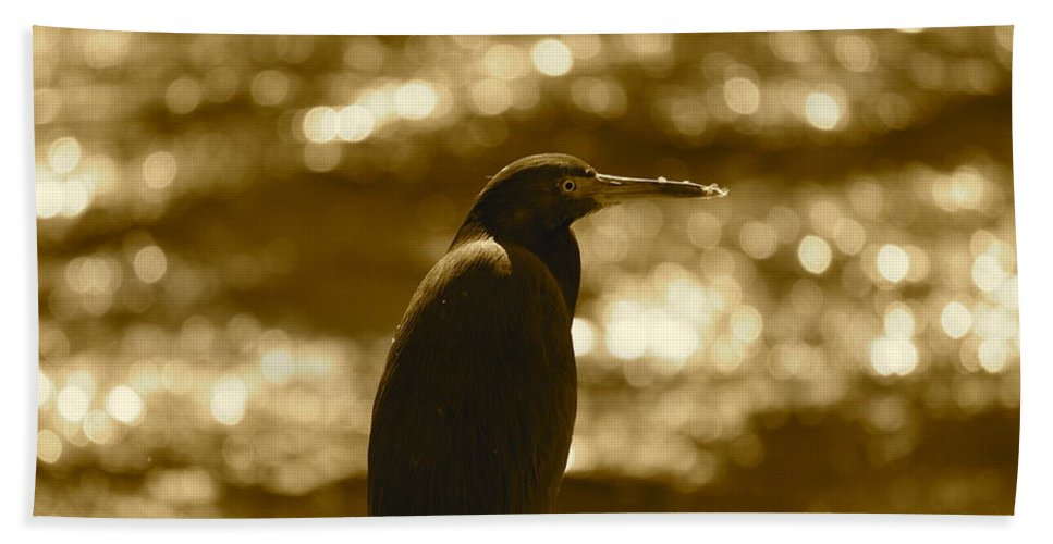 Heron Hand Towel featuring the photograph Little Blue Heron In Golden Light by Carol Groenen