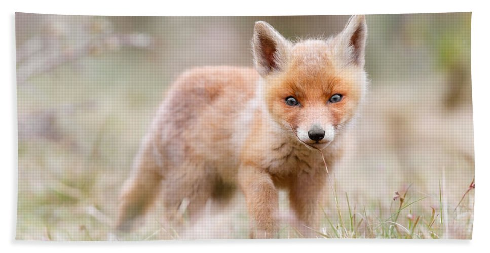Fox Bath Towel featuring the photograph Little Fox Kit, Big World by Roeselien Raimond