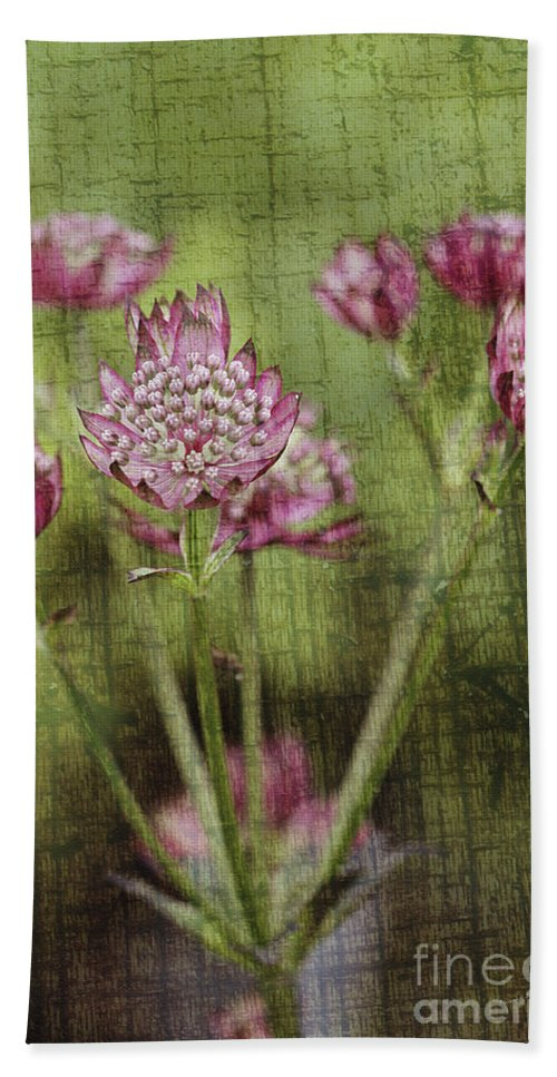 Flowers Hand Towel featuring the photograph Little Pink Jewels by Deborah Benoit