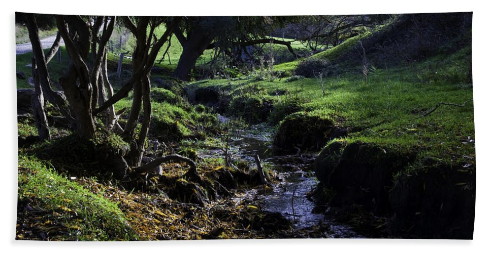 Stream Bath Towel featuring the photograph Little Stream by Kelly Jade King