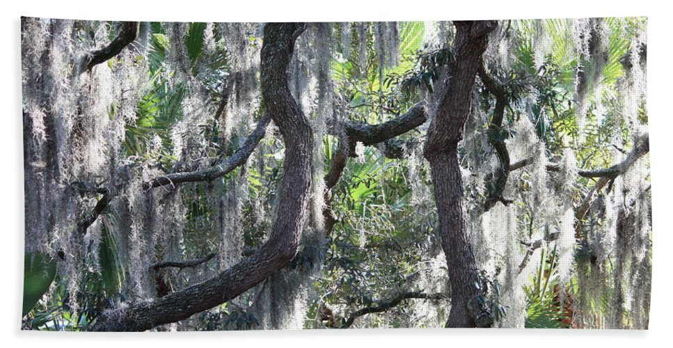 Spanish Moss Bath Sheet featuring the photograph Live Oak With Spanish Moss And Palms by Carol Groenen