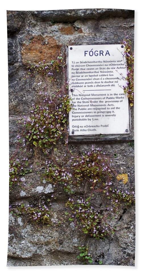 Irish Bath Towel featuring the photograph Living Wall At Donegal Castle Ireland by Teresa Mucha