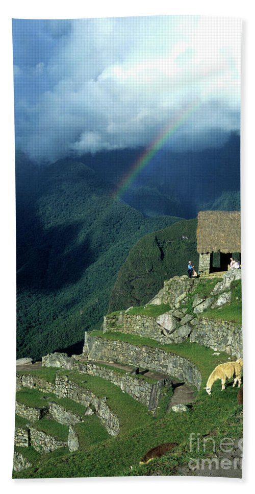 Machu Picchu Hand Towel featuring the photograph Llama And Rainbow At Machu Picchu by James Brunker