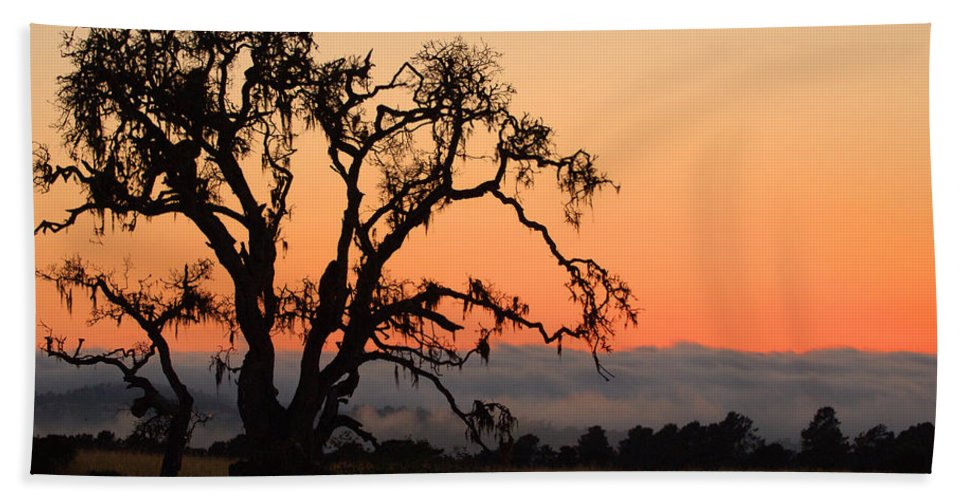 Tree Fog Landscape Weather Sunset Orange Nature Botanical Hand Towel featuring the photograph Loan Tree Overlooking Fog by Jill Reger
