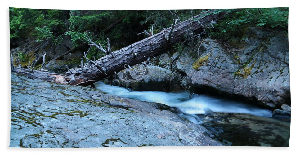 Water Bath Sheet featuring the photograph Log Over Deep Creek by Jeff Swan