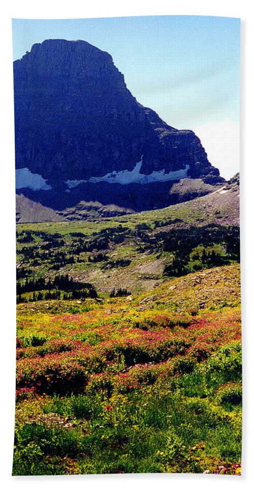 Glacier National Park Bath Sheet featuring the photograph Logans Pass In Glacier National Park by Nancy Mueller