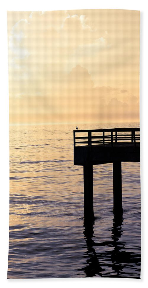Beach Hand Towel featuring the photograph Lone Bird At Morning by Marilyn Hunt