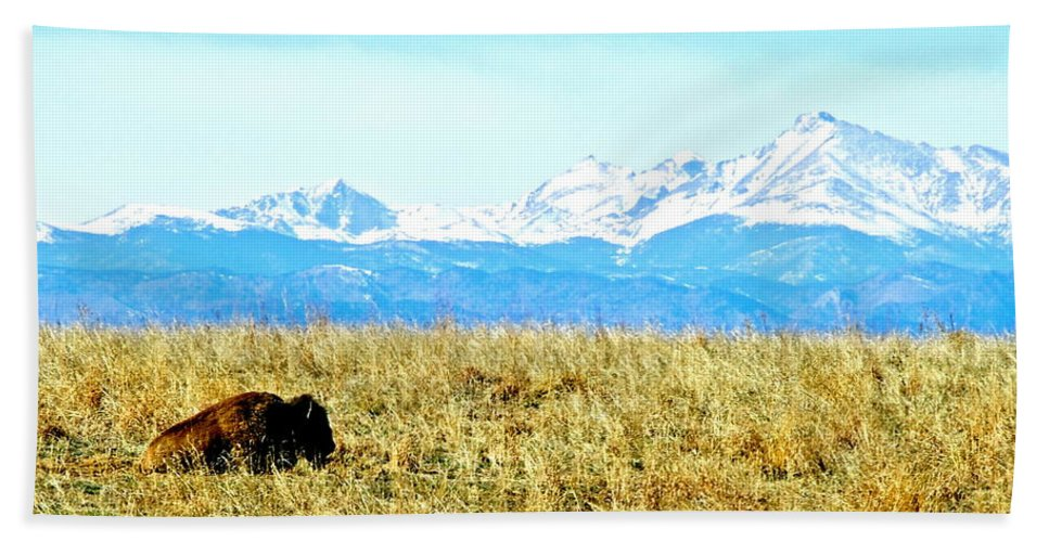 Buffalo Hand Towel featuring the photograph Lone Buffalo Watching The Rocky Mountains by Amy McDaniel