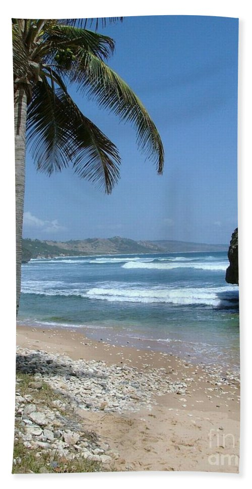 Carribean Bath Sheet featuring the photograph Lone Palm On Barbados Coast by Neil Zimmerman