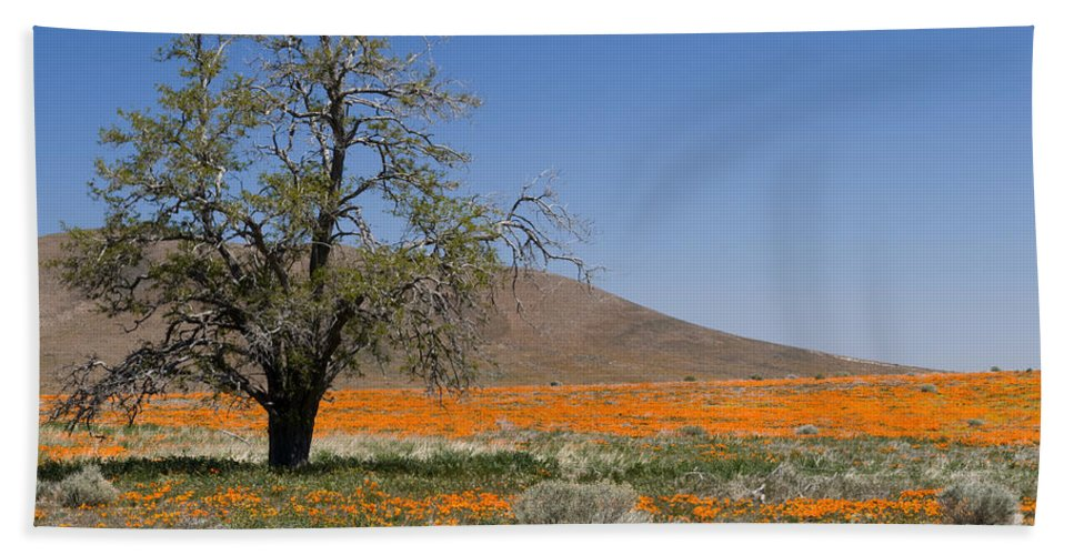 Poppies Hand Towel featuring the photograph Lone Tree In The Poppies by Sandra Bronstein