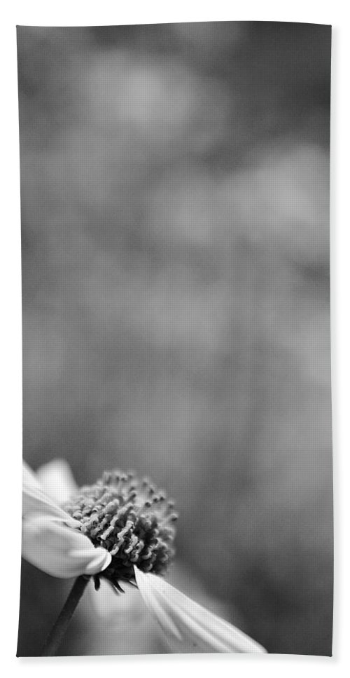 Black And White Hand Towel featuring the photograph Lone Wildflower Black And White by Jill Reger