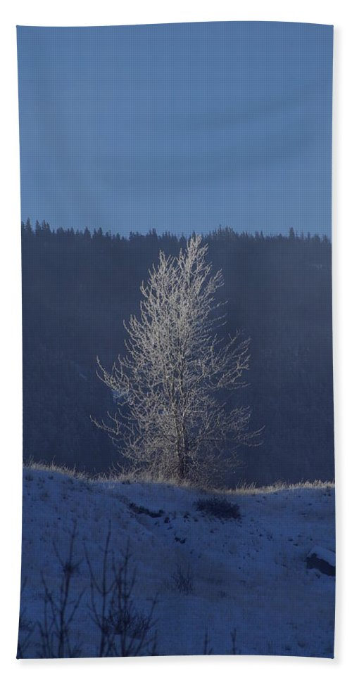 Lonely Bath Sheet featuring the photograph Lonely Frosty Tree by Cindy Johnston