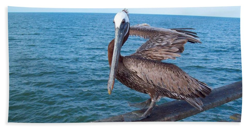 Pelican Hand Towel featuring the photograph Lonely Pelican by Loring Laven
