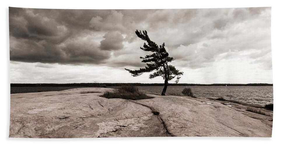Cliff; Clouds; Crack; Granite; Growing; Growth; Isolated; Isolation; Lake; Lakeshore; Landscape; Lone; Lonely Hand Towel featuring the photograph Lonely Tree by Georgy Kuznetsov