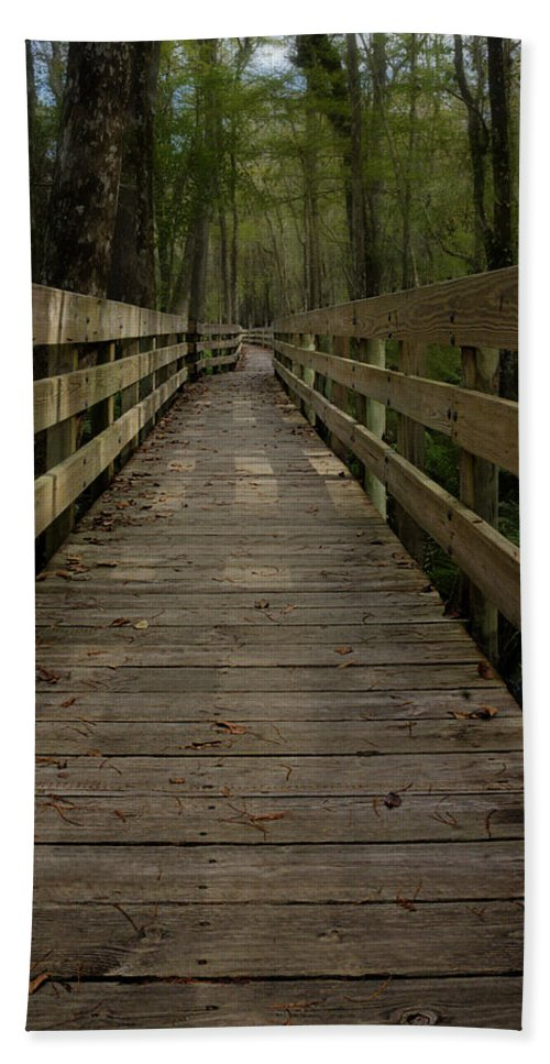 Boardwalk Hand Towel featuring the photograph Long Boardwalk Through The Wetlands by Mitch Spence