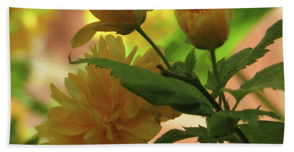 Yellow Flowers Hand Towel featuring the photograph Looking Cool by Kim Tran