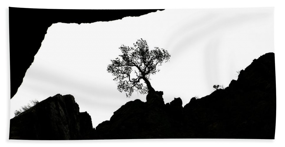 Tree Bath Towel featuring the photograph Looking Up 2 by Marilyn Hunt