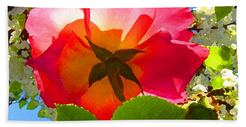 Roses Hand Towel featuring the photograph Looking Up At Rose And Tree by Amy Vangsgard