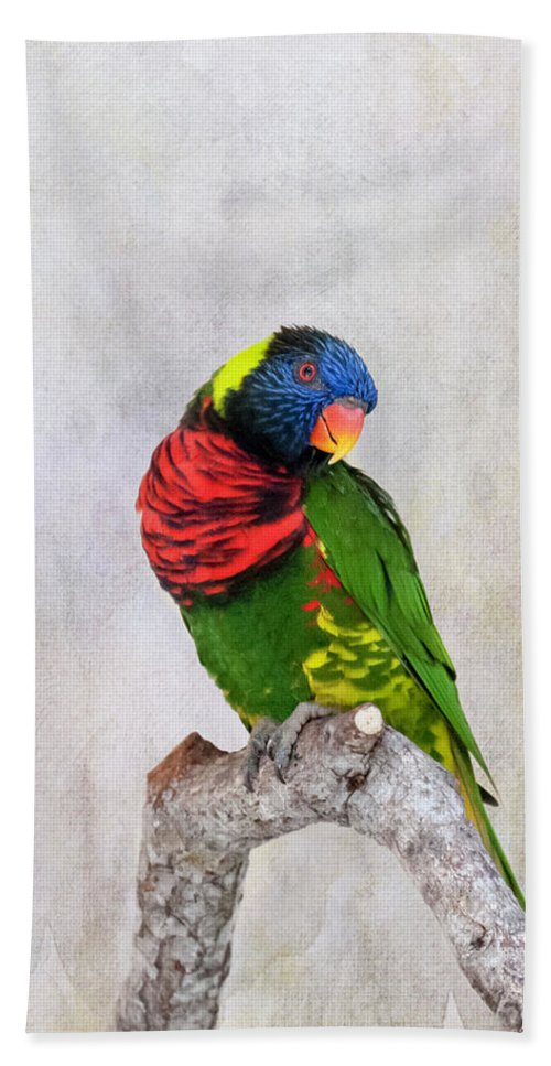 Lorikeet Greeting Bath Towel featuring the photograph Lorikeet Greeting by Phyllis Taylor