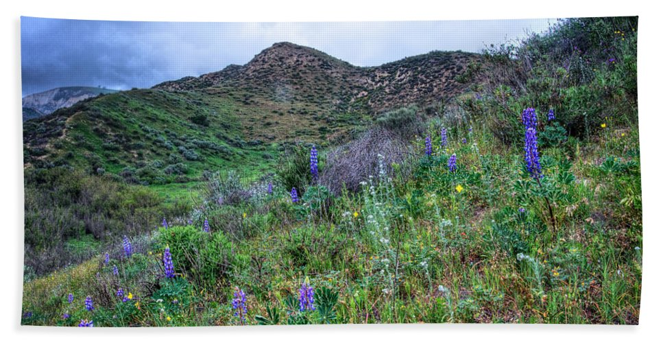 Lost Canyon Bath Towel featuring the photograph Lost Canyon Wildflowers by Lynn Bauer