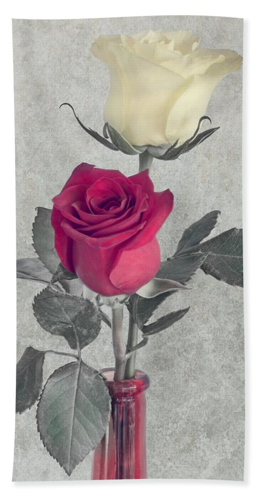 Botanical Hand Towel featuring the photograph Love Through The Darkness by Garvin Hunter
