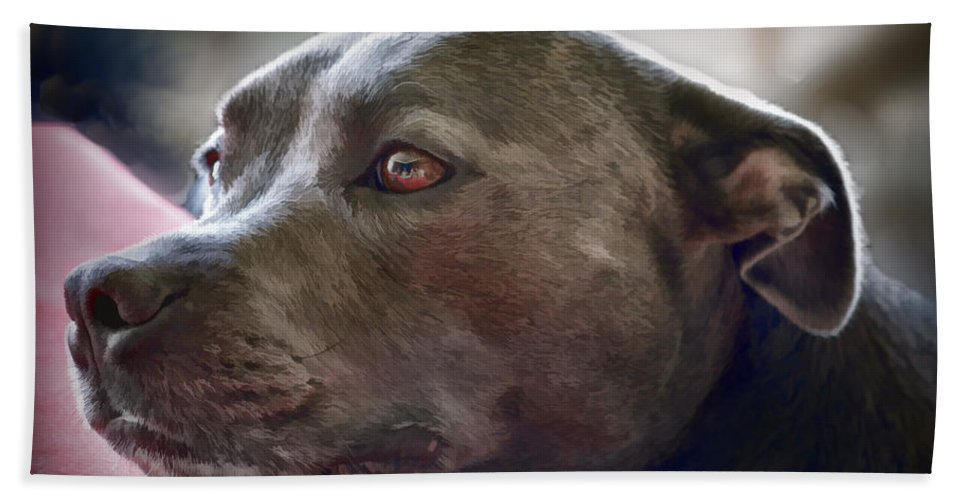 Pitbull Hand Towel featuring the painting Loving Pitbull Eyes by Elaine Plesser