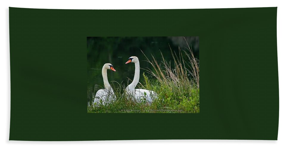 Clay Bath Towel featuring the photograph Loving Swans by Clayton Bruster