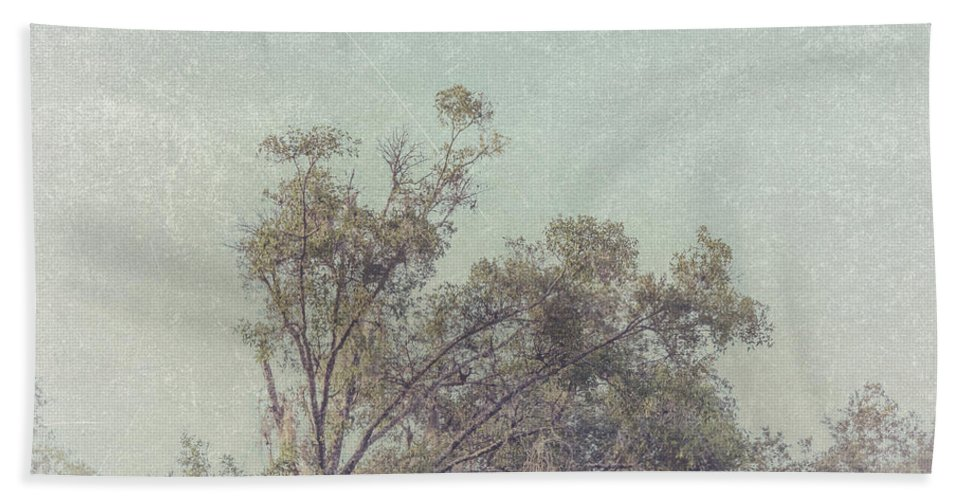 Trees Bath Sheet featuring the photograph Loving The Trees by Louise Hill