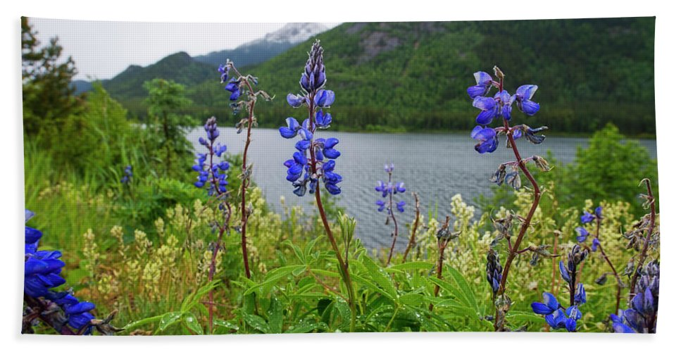 Lupine Bath Sheet featuring the photograph Lupines And Water by David Arment