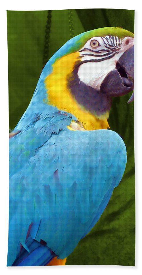 Bird Bath Sheet featuring the photograph Macaw by JAMART Photography